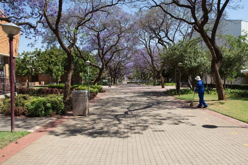 Fees Must Fall Sør Afrika Universitet Campus